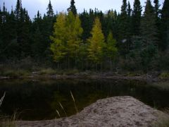 """Snuffy""""s Island View by <b>cwalter1</b> ( a Panoramio image )"""
