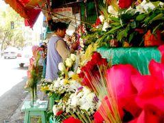 Mercado de flores - Catalayud by <b>Gui Torres</b> ( a Panoramio image )