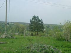Май 2009г. by <b>Ден 341</b> ( a Panoramio image )
