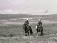 Пустыня Гоби by <b>mr.dexter</b> ( a Panoramio image )