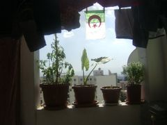 Balcon by <b>haninouya</b> ( a Panoramio image )