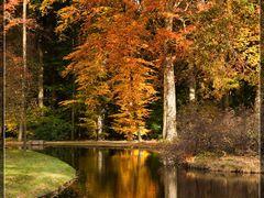 Herfst en spiegeling IV by <b>© BraCom (Bram)</b> ( a Panoramio image )