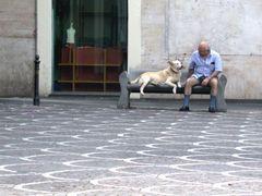 """paterno - """"conversazione in Sicilia"""" by <b>adriana bruno</b> ( a Panoramio image )"""
