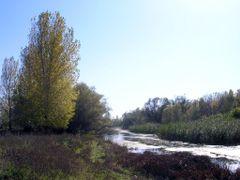 Koshevanka river by <b>BuzinS</b> ( a Panoramio image )