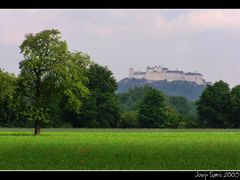 festung_preko_livade by <b>sarjos</b> ( a Panoramio image )