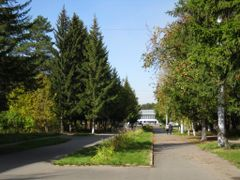 Аллея в посёлке «Бор» by <b>Kobzar Kostyantyn (Ukraine)</b> ( a Panoramio image )