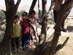 children in kabul by <b>Reza,Zandi</b> ( a Panoramio image )