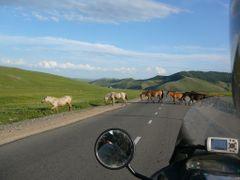 Mongolia by <b>Jarek Szlachetko</b> ( a Panoramio image )