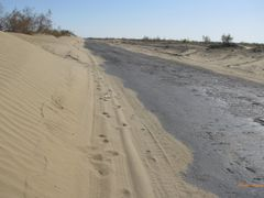 strada nel deserto del Kyzylkum   via della seta  by <b>Airone</b> ( a Panoramio image )