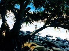 "Surfer""s Paradise, Queensland, Australia by <b>Cal Kimola Brown</b> ( a Panoramio image )"