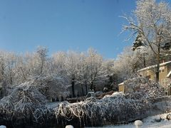 First Snow of 2009 in Merrimack New Hampshire by <b>draws4430</b> ( a Panoramio image )