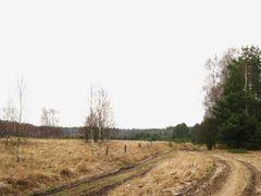 Gebiny droga do Gromela by <b>Pawel Jaszczuk</b> ( a Panoramio image )