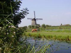 Paisaje holandes by <b>LEIRE13</b> ( a Panoramio image )