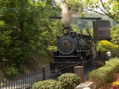 Mikado Class 2-8-2 numbered 192 at Dollywood in Pigeon Forge, TN by <b>Stagmie</b> ( a Panoramio image )