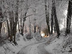 Cold way in Bousval by <b>brussels100</b> ( a Panoramio image )