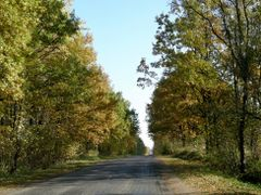 Sunny autumn road to stable at Zagorie by <b>Koni.BY</b> ( a Panoramio image )