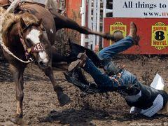 Innisfail Rodeo by <b>Lukas Novak</b> ( a Panoramio image )