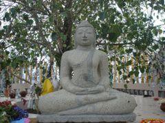 Samadhi Buddha statue by the Bo Tree at Ambuluwawa by <b>jmsbandara</b> ( a Panoramio image )