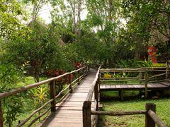 Centro Ecoturistico las Guacamayas Chiapas ID: 30849677  by <b>Mel Figueroa</b> ( a Panoramio image )