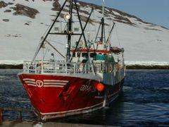 Bjal Opelio i havn by <b>arbuh</b> ( a Panoramio image )