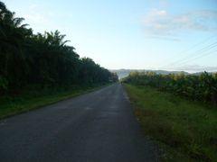 Carretera en Chacarita (cruce hacia Puerto Jimenez) by <b>erojascabezas</b> ( a Panoramio image )