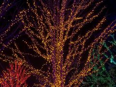 Magic Lights by <b>keithwatson66</b> ( a Panoramio image )