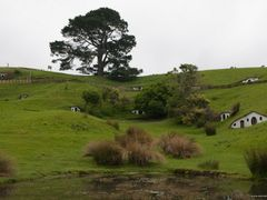 New Zealand - Hobbiton by <b>unicus</b> ( a Panoramio image )