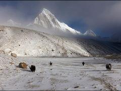 Gorak Shep by <b>OxyPhoto.ru - O x y</b> ( a Panoramio image )