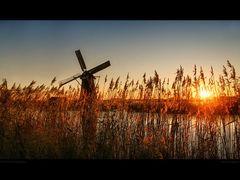 Kinderdijk. Sunny Evening. by <b>Edward Galagan</b> ( a Panoramio image )