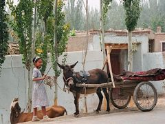 On road from Kashgar to Pamir by <b>www.turclubmai.ru</b> ( a Panoramio image )