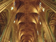 Inside the Cathedral by <b>manuamador</b> ( a Panoramio image )