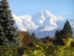 mb - Monch - in den Berneralpen - in the Bernese Alps by <b>? Swissmay</b> ( a Panoramio image )