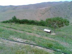 Горный оазис перед 3-им перевалом к Северу от горы Улугтау by <b>C.K.Sangin</b> ( a Panoramio image )