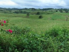 Rolling hills of Arecibo Puerto Rico by <b>geocheb</b> ( a Panoramio image )