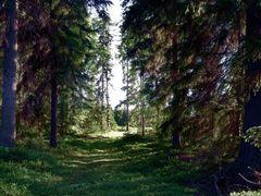 Varisniemella by <b>junkohanhero</b> ( a Panoramio image )