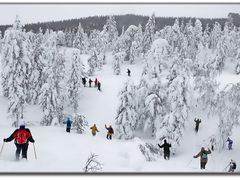 Winter by <b>Kimmo Lyytikainen</b> ( a Panoramio image )