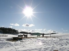 Snowy pasture at Zagorie  by <b>Koni.BY</b> ( a Panoramio image )