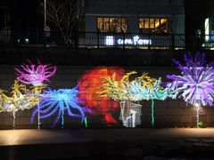 Amazing Optical Magic at Riverside, Cheonggyecheon by <b>Danielcarlsbad</b> ( a Panoramio image )