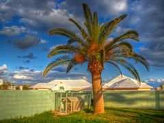 Back Yard Bermuda by <b>Faryndale</b> ( a Panoramio image )