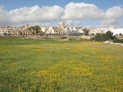 Springfield near Siggewi, Malta by <b>longdistancer</b> ( a Panoramio image )