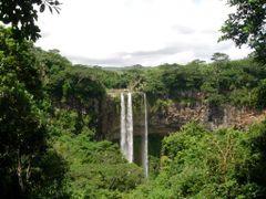 Mauritius. Black River Park.  by <b>pier luigi baglioni</b> ( a Panoramio image )