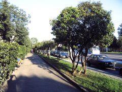 Av.Partizanski, Minsk, BY, 19-07-2007 by <b>se_bmw</b> ( a Panoramio image )