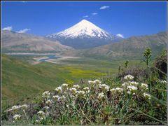 Без названия by <b>Mahdi Kalhor</b> ( a Panoramio image )