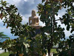 Buddha statue on the Ambuluwawa hill over Gampola by <b>Jerzy Bartosik</b> ( a Panoramio image )
