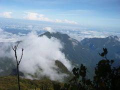 Sarawak, Gunung Mulu, summit view by <b>ian hollingsworth</b> ( a Panoramio image )