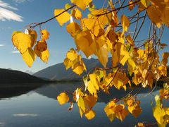 new-zealand lake-wanaka by <b>illusandpics.com</b> ( a Panoramio image )