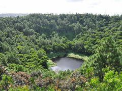 Cratere vulcanico, Trou aux Cerfs - Mauritius by <b>Giuseppe Caterina - Continenti</b> ( a Panoramio image )