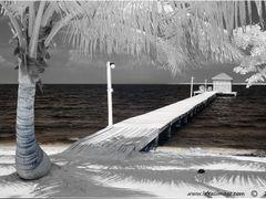 Coco Plum Pier by <b>Lukas Novak</b> ( a Panoramio image )