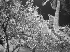 Vertically Poetic by <b>Lukas Novak</b> ( a Panoramio image )