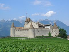 Aigle by <b>rosz2</b> ( a Panoramio image )